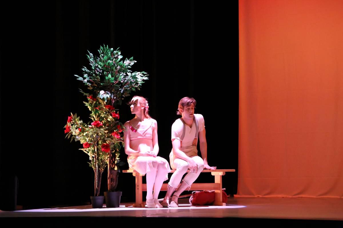 ballet-danse-classique
